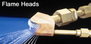Flame Heads
